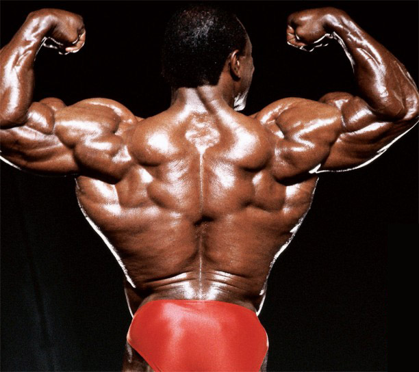 leehaney2back